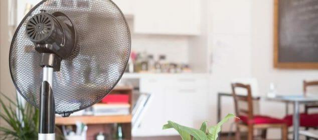 ventilateur-brumisateur-avantages-vous-pour