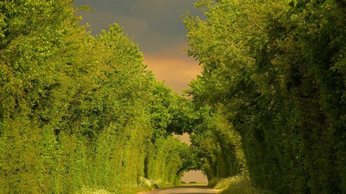 campagne Vendée