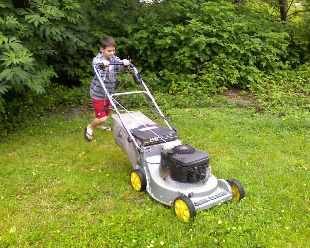entretenir pelouse