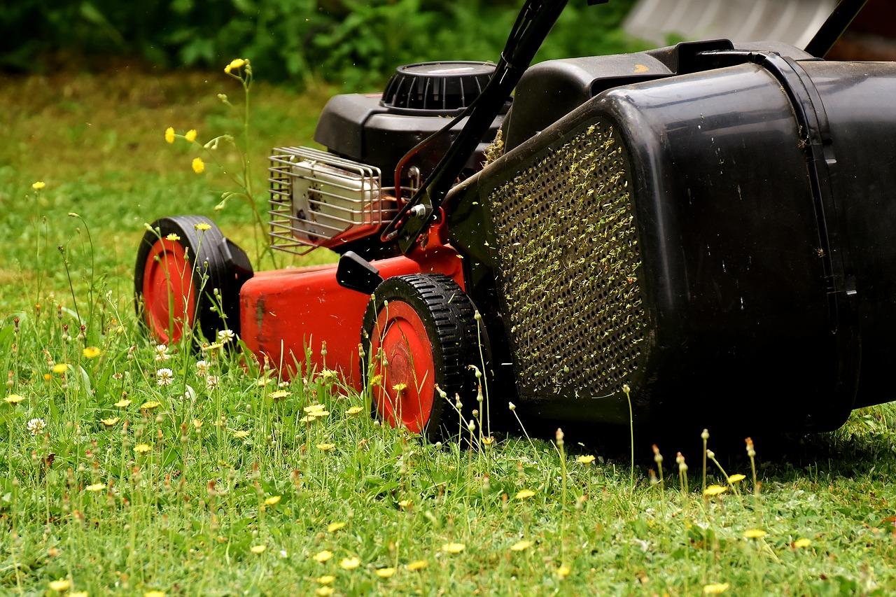 nettoyer pelouse